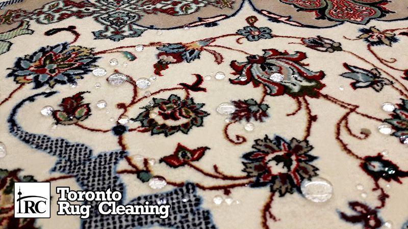 rug carpet scotch guarding toronto rug cleaning